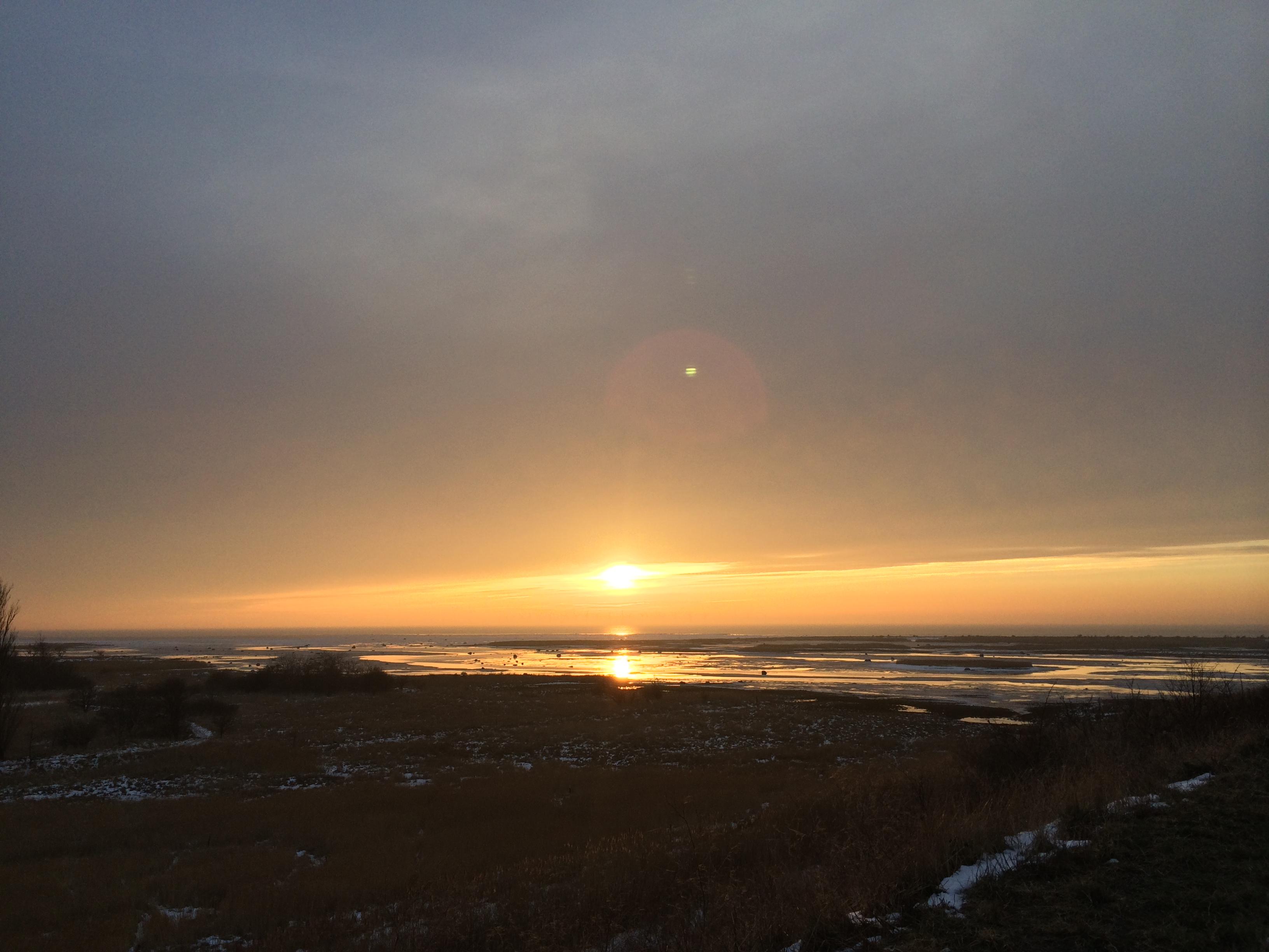 Eftermiddag i solnedgång